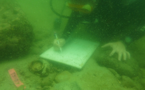 Divers uncover historical treasure trove in waters off Sai Kung | South China Morning Post